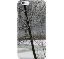 Old Woman Creek In Winter 3 iPhone Case/Skin