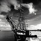 Tall Ship by Michael Walsh