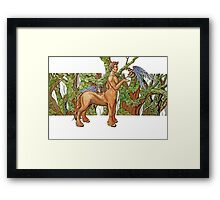 Earth centaur Framed Print