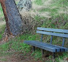 Empty Bench, 2007 by Cory Miller