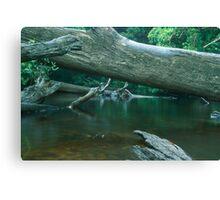 clyde river Canvas Print