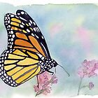 butterfly by Nina Rycroft