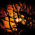 Not So Burnt Skies by Jamie Tucker