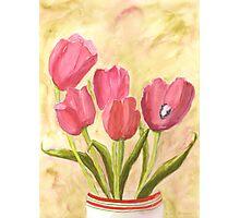 Christmas Tulips Photographic Print