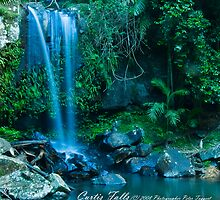 Curtis Falls Queensland Australia by Peter Taggert