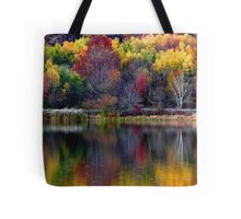 Autumn Sprinkle at Rose Valley Lake Tote Bag