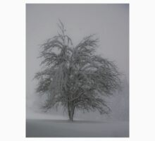 Lone tree in the snow Kids Clothes