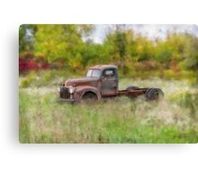 Put out to Pasture Canvas Print