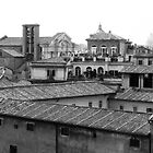 Roman Rooftops by Joseph Johnson