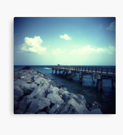 South Point. Canvas Print