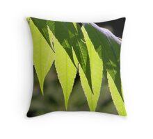 Sumac Contrast Throw Pillow