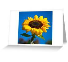 Sunflower challenge Greeting Card