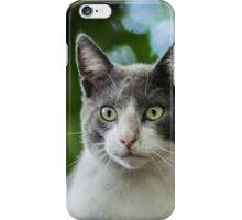 11515 green eyes iPhone Case/Skin
