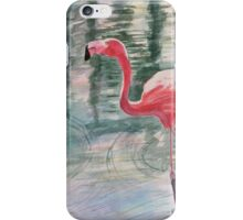 Flamingo Chat Time iPhone Case/Skin