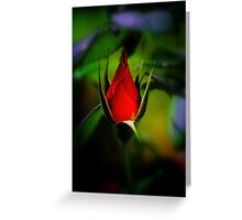 Beauty in the Shadows Greeting Card