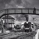 Bo'ness and Kinneil Railway B&W by Tom Gomez