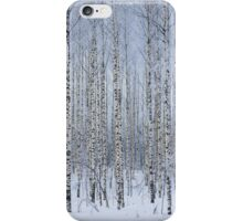 Birch forest iPhone Case/Skin
