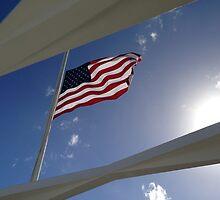USS Arizona Memorial - Pearl Harbor by davidpesek
