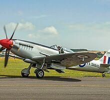Spitfire FR.XVIIIe SM845/R G-BUOS by Colin Smedley
