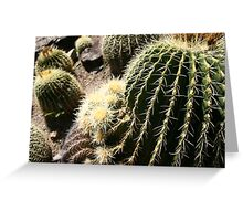 A Spikey Situation Greeting Card