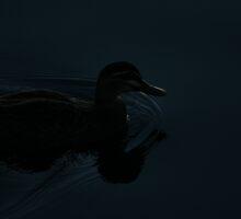 Darkwing Duck by Jason Asher