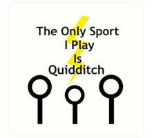 Harry Potter Quidditch Art Print
