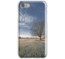 Frosty Winter Morning iPhone Case/Skin