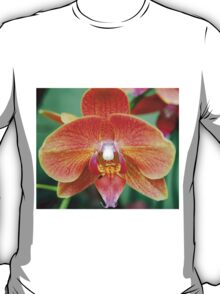 Orange Orchid T-Shirt