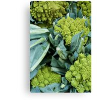 Crazy Broccoli Canvas Print