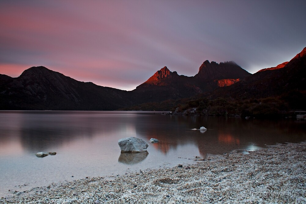 Morning Glow_Cradle Mountain by Sharon Kavanagh