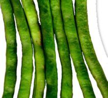 100 Percent Organic (Beans) Sticker