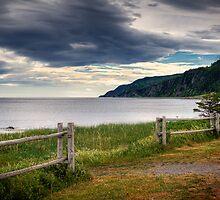 Coastal Fence by Viktor Elizarov