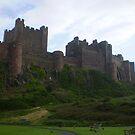 Bamburgh Castle by oscars