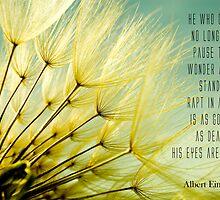 Albert Einstein's Dandelion by FemLaBru