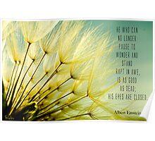 Albert Einstein's Dandelion Poster
