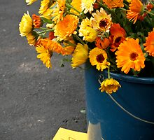 Yellow and Orange Flowers by bethstedman