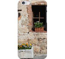 Shady Window iPhone Case/Skin