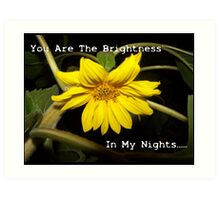 You Are The Brightness In My Nights.... Art Print