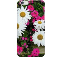Geraniums And Daisies iPhone Case/Skin