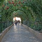 Archway of the Generalife by phil decocco