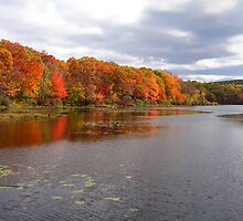 Fall, Harriman State Park, New York by fauselr