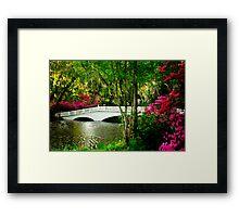 The Bridge in Spring Framed Print