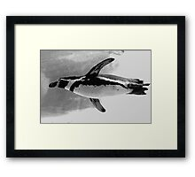 Penguin Airlines: We Leave Your Paparazzi In Our Wake! Framed Print