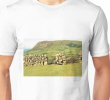 Above Llanfairfechan with Indy. Unisex T-Shirt