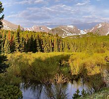 Rocky Mountain Morning by Stephen Vecchiotti
