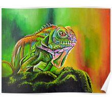 The Rainbow Lizard Poster