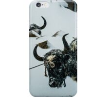 Yak Life IV iPhone Case/Skin
