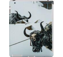 Yak Life IV iPad Case/Skin