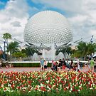 Epcot in Spring by David Lamb