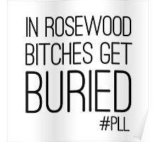 "Pretty Little Liars ""Bitches Get Buried"" Poster"
